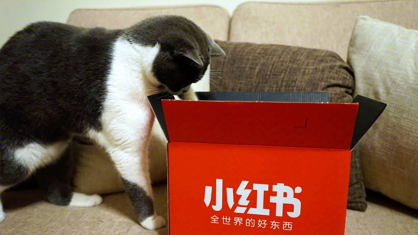 小红书品牌营销负责人:Z世代将给品牌带来5大机遇